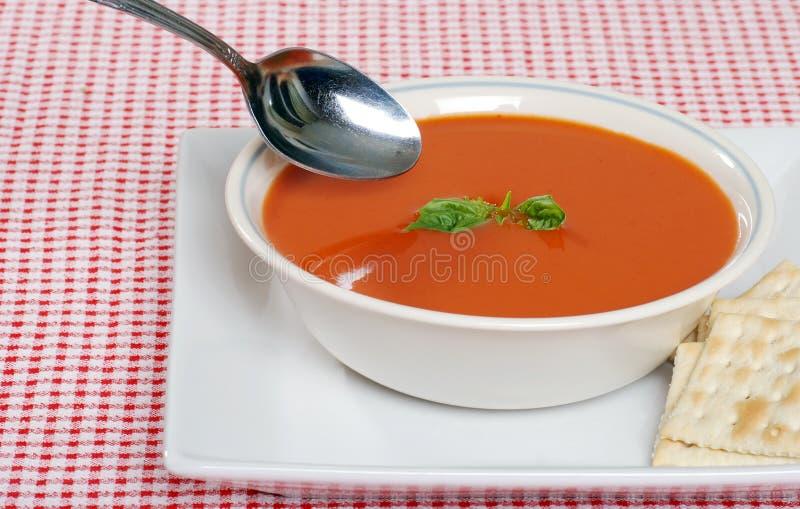 Sopa do tomate com biscoitos e manjericão foto de stock royalty free