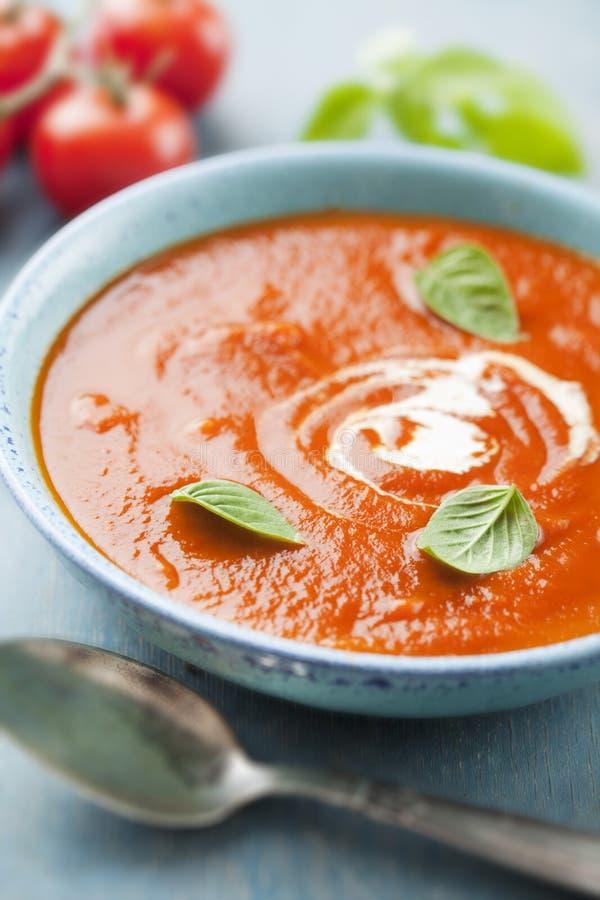 Sopa do tomate foto de stock royalty free