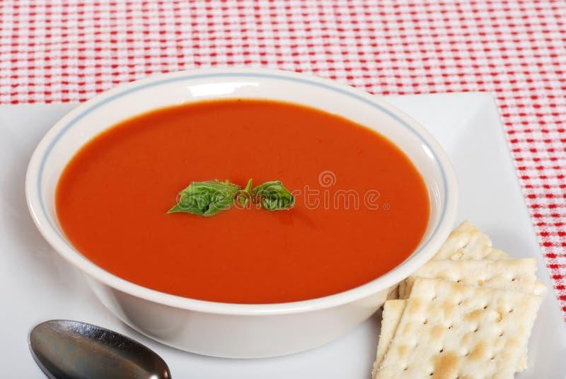 Sopa do tomate com manjericão e biscoitos fotos de stock royalty free