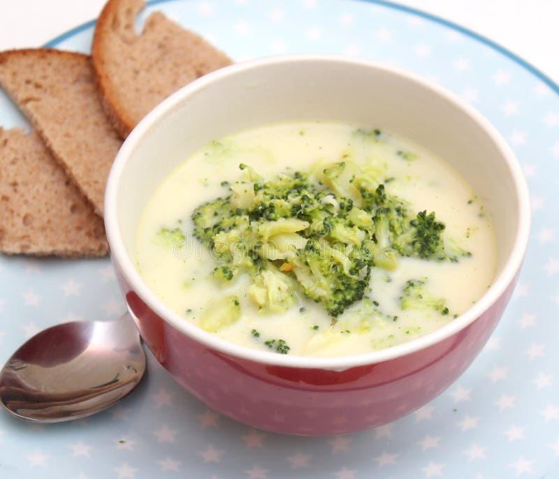 Sopa dos brócolos fotografia de stock