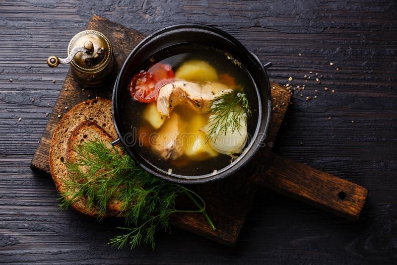 Sopa dos peixes com salmões fotos de stock royalty free