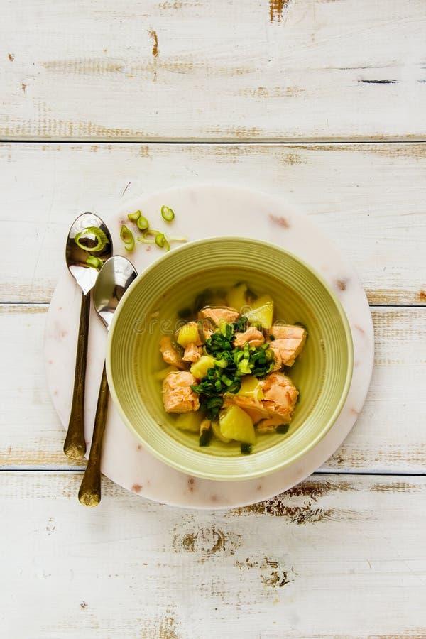 Sopa dos peixes com salmões imagem de stock royalty free