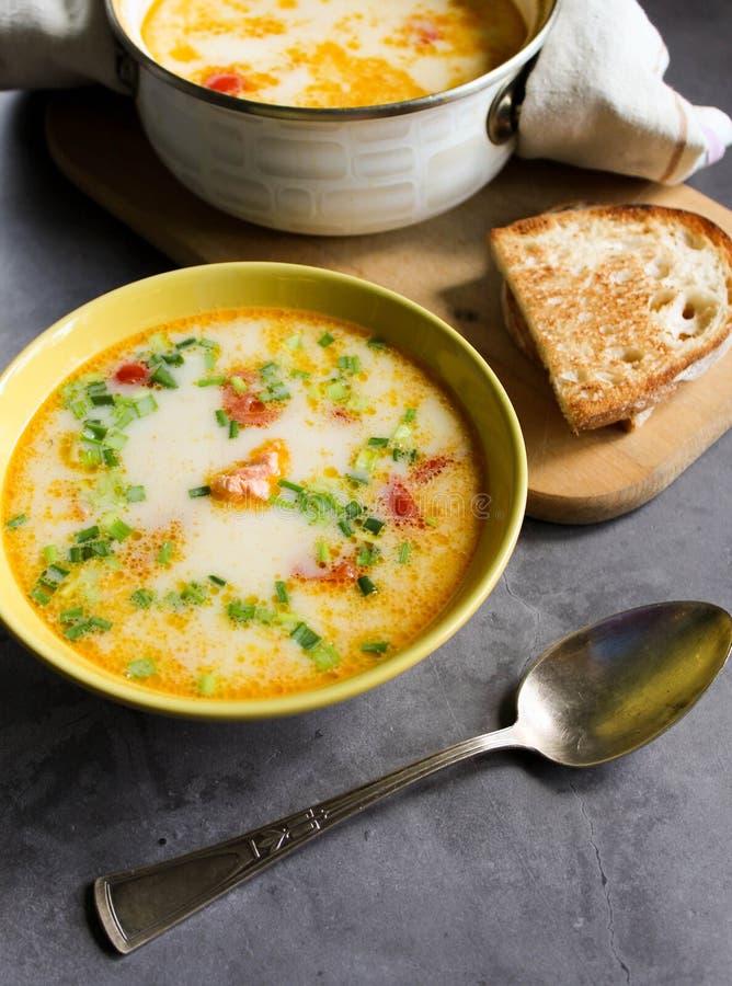 Sopa dos salm?es com creme e vegetais em uma placa amarela imagens de stock