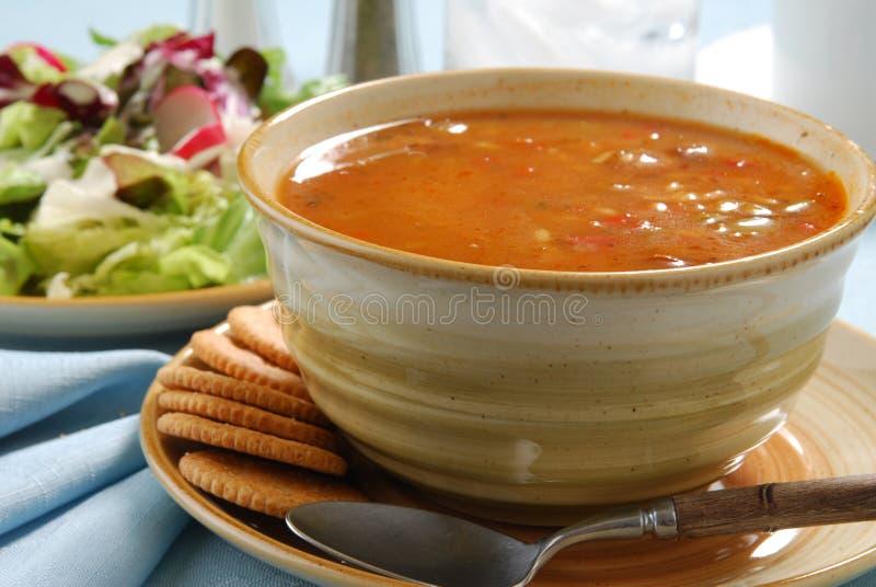 Sopa e salada imagem de stock royalty free