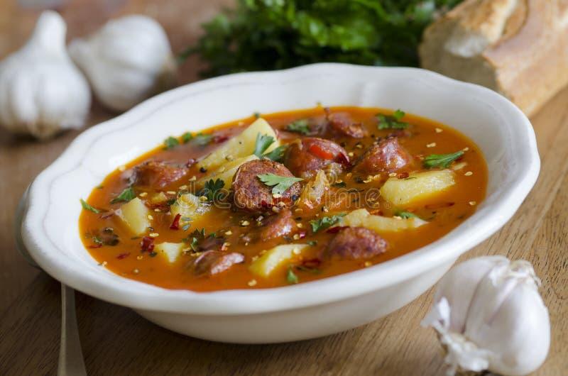 Sopa espanhola fotografia de stock