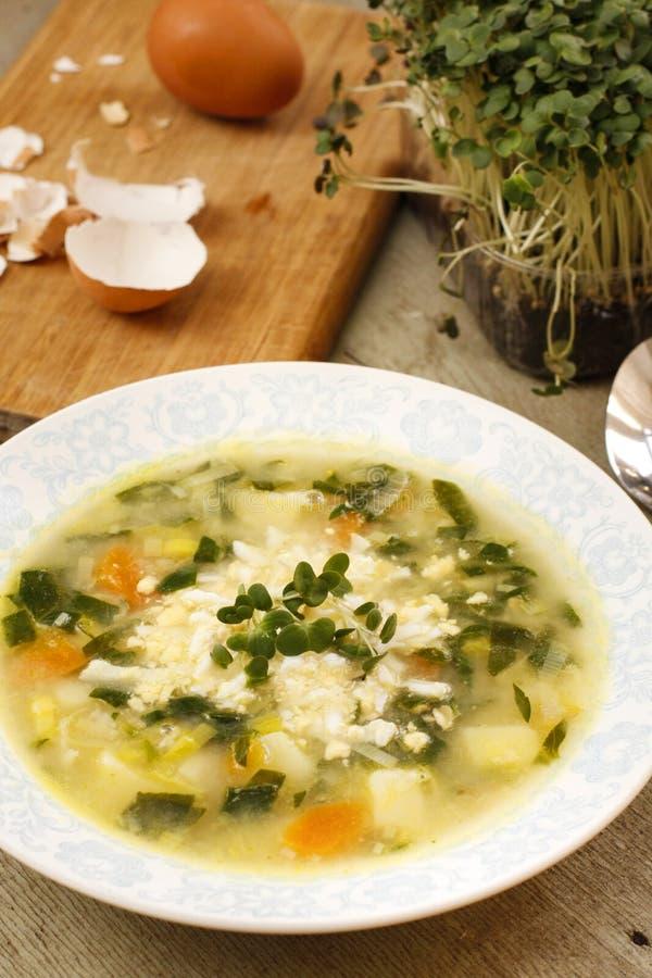 Sopa especial del huevo con los brotes y las patatas de la col fotos de archivo