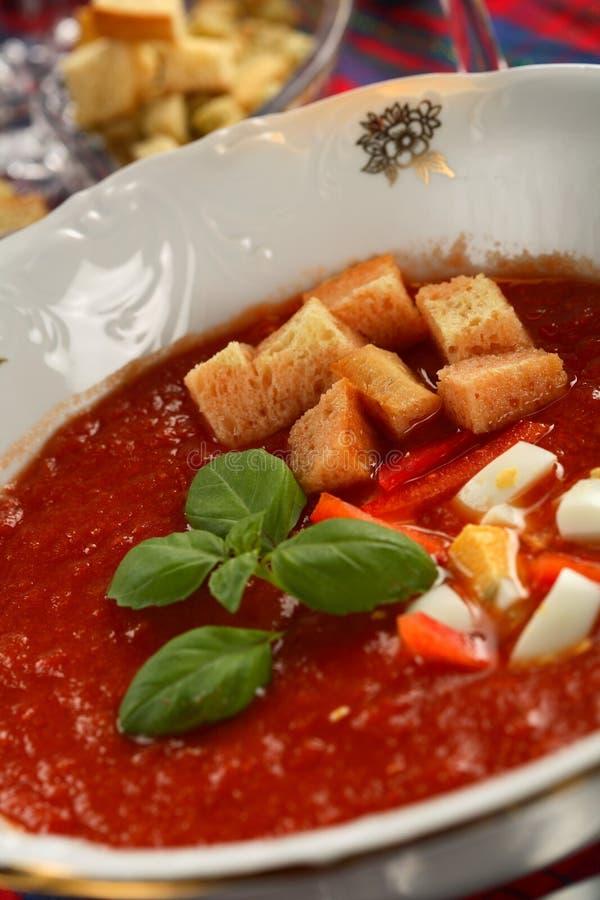Sopa espesa de los tomates fotos de archivo libres de regalías