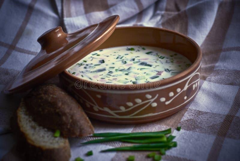 Sopa fría con las cebollas verdes y el pan imagen de archivo libre de regalías