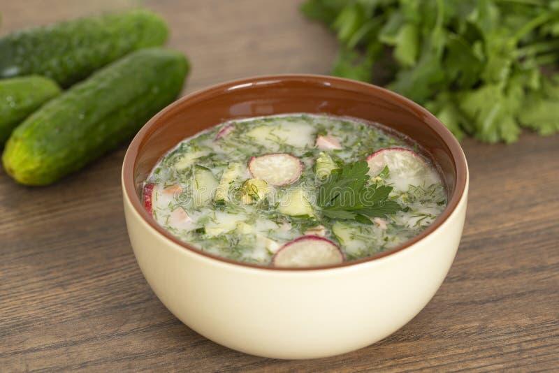 Sopa fría del yogur del verano con el rábano, el pepino, y el eneldo en la tabla de madera Sopa de verduras fría rusa en el yogur imágenes de archivo libres de regalías