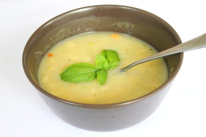 Sopa fresca fotos de stock royalty free