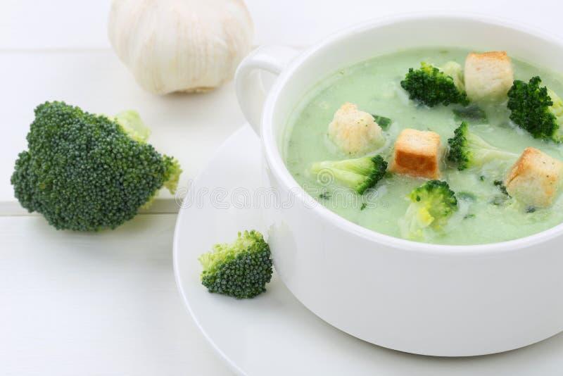 Sopa fresca del bróculi en primer de la taza fotografía de archivo libre de regalías