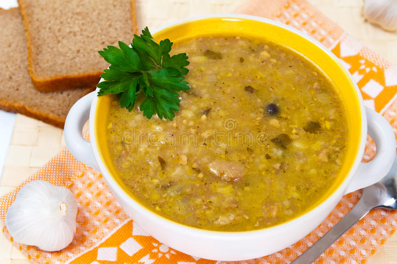 Sopa Georgian com carne e arroz fotografia de stock