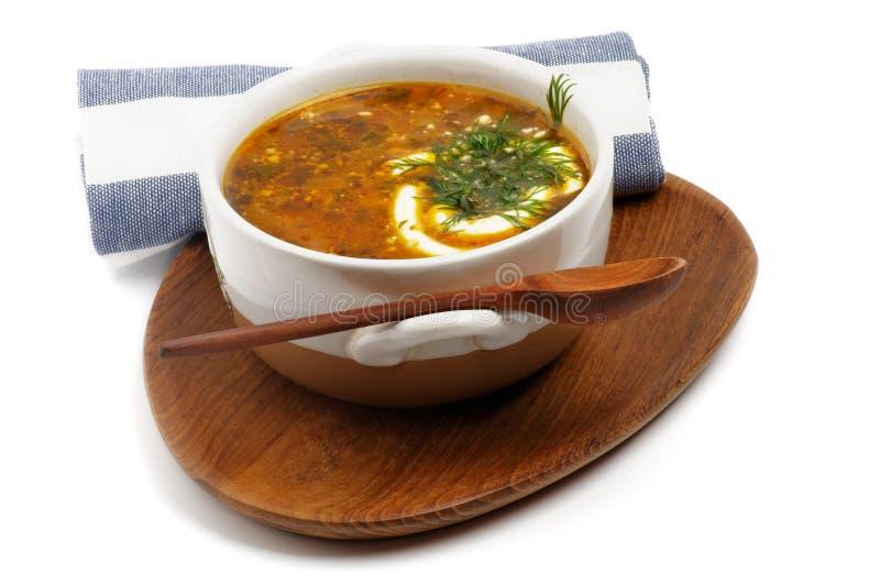 Sopa hecha en casa de la col imagen de archivo