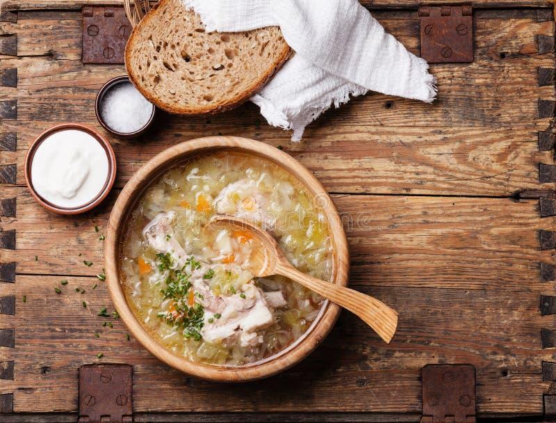 Sopa hecha en casa de la col fotografía de archivo libre de regalías
