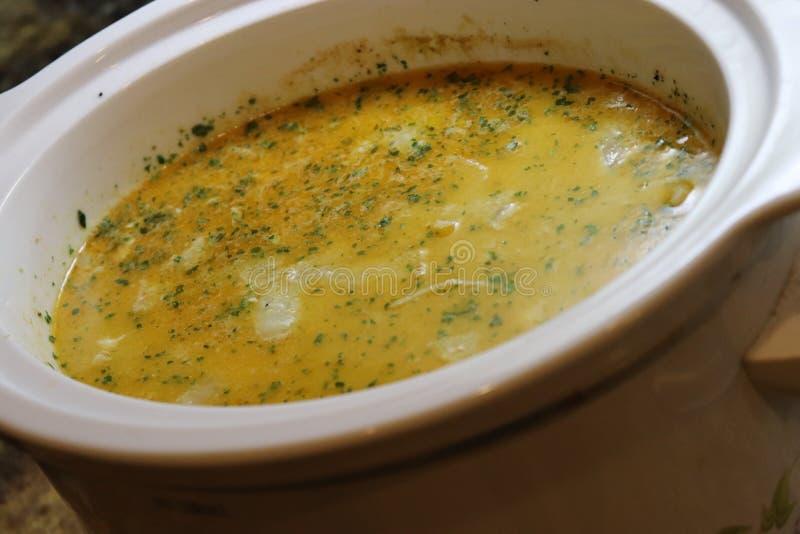 Sopa india del curry en crockpot lento de la cocina fotografía de archivo