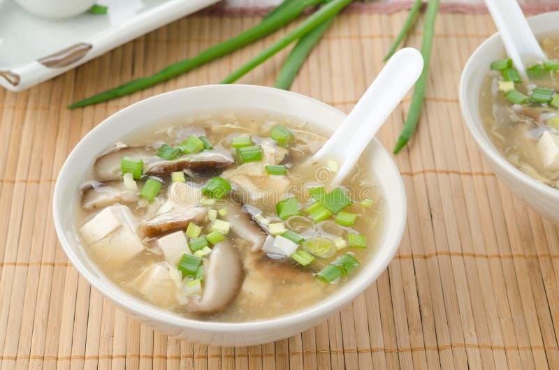 Sopa picante chinesa com ovo, cogumelos de shiitake, tofu e verde fotos de stock