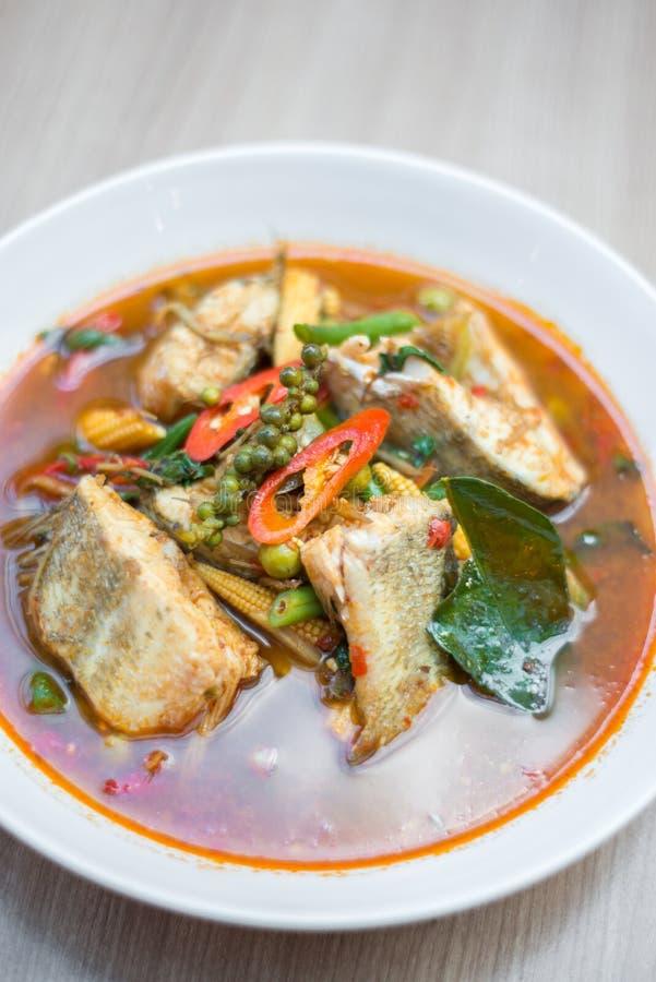Sopa picante tailandesa dos peixes fotos de stock royalty free