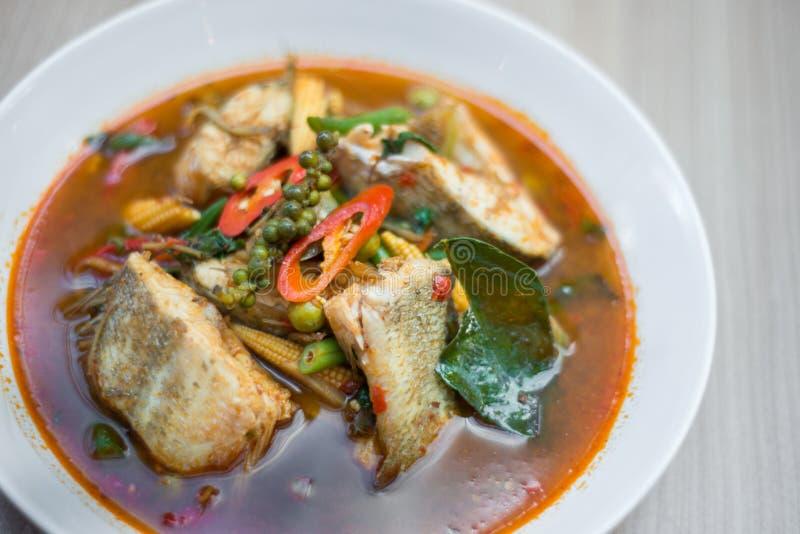 Sopa picante tailandesa dos peixes imagens de stock royalty free