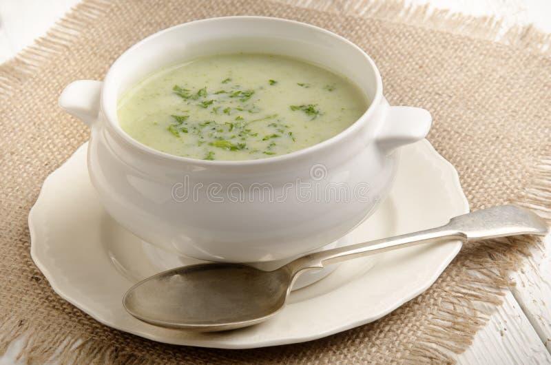 Sopa poner crema del bróculi con perejil foto de archivo libre de regalías