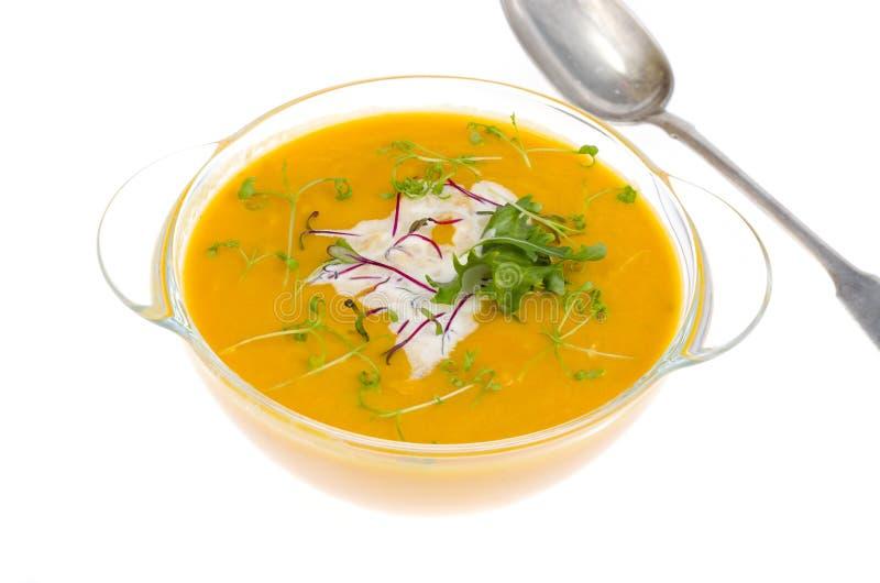 Sopa poner crema vegetal con los brotes verdes jovenes aislados en el fondo blanco imagenes de archivo