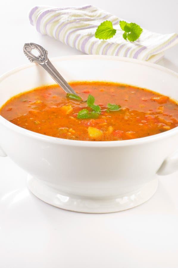 Sopa quente fotos de stock royalty free