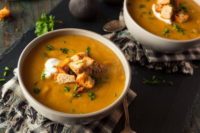 Sopa quente caseiro da polpa de Butternut fotos de stock royalty free