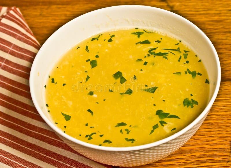 Sopa simples da gota do ovo - dieta do paleo imagens de stock
