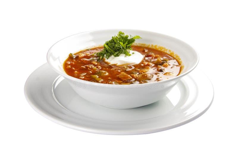 Sopa ?Solyanka ? Sopa com carne e salmouras Um prato polon?s tradicional imagem de stock royalty free
