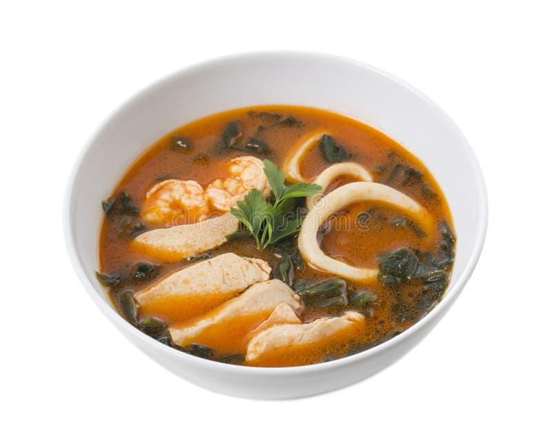Sopa tailandesa deliciosa de tom yum imagem de stock