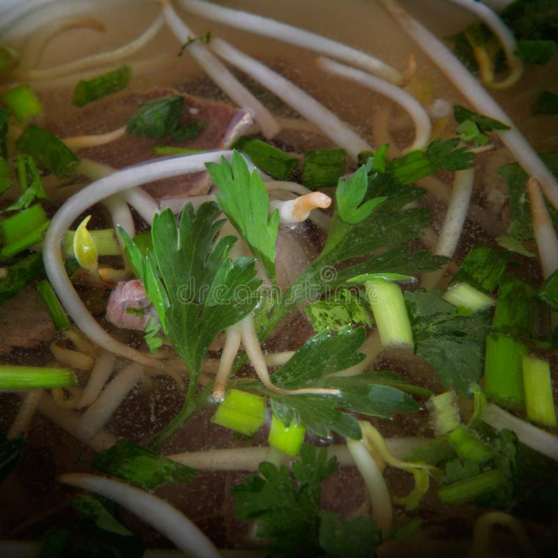 Sopa tradicional chinesa quente da cebola imagens de stock royalty free