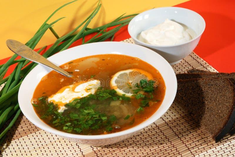 Sopa tradicional do russo - solyanka fotografia de stock