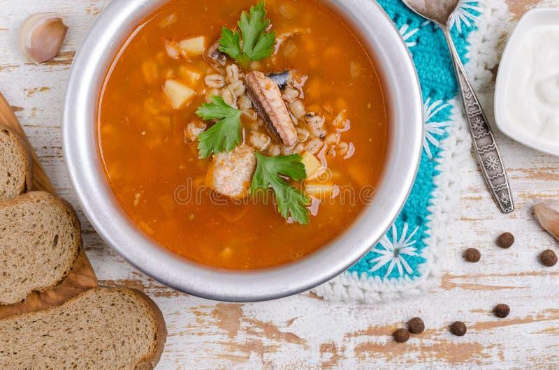 Sopa tradicional dos peixes do tomate fotografia de stock