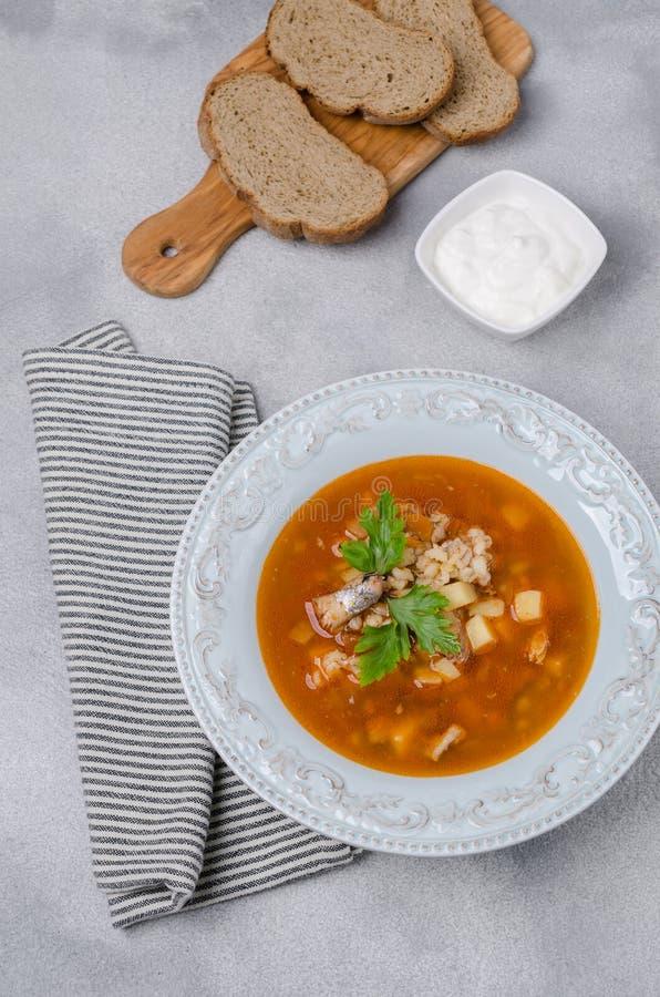 Sopa tradicional dos peixes do tomate foto de stock royalty free