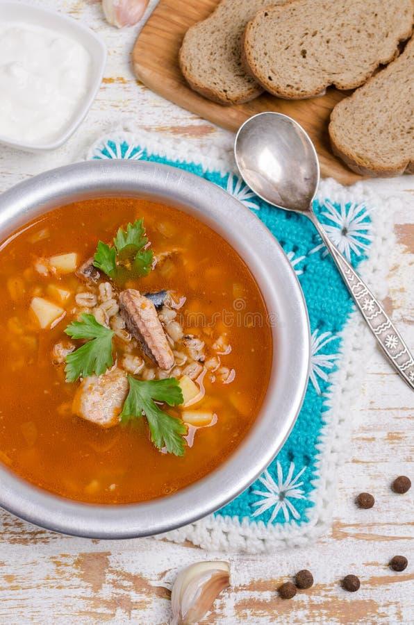 Sopa tradicional dos peixes do tomate fotos de stock royalty free