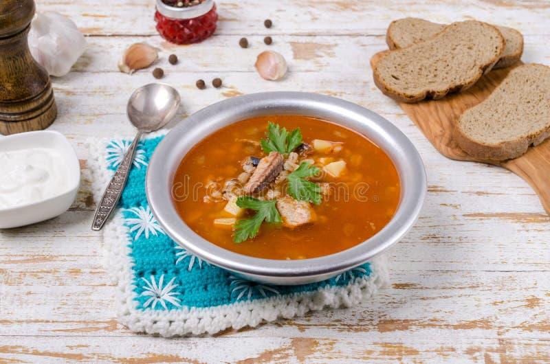 Sopa tradicional dos peixes do tomate foto de stock