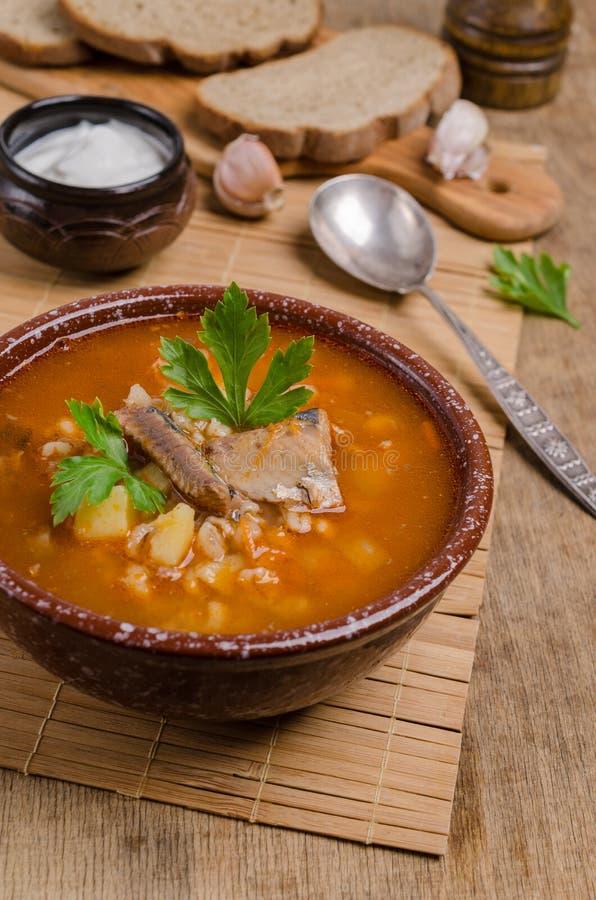 Sopa tradicional dos peixes do tomate imagem de stock