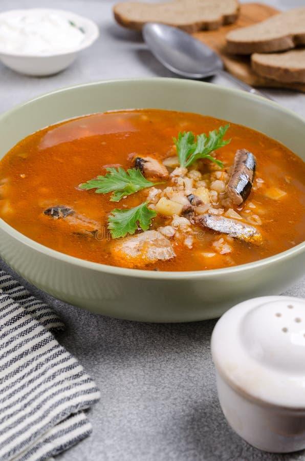 Sopa tradicional dos peixes do tomate fotos de stock