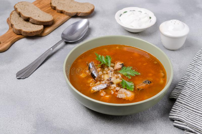 Sopa tradicional dos peixes do tomate fotografia de stock royalty free