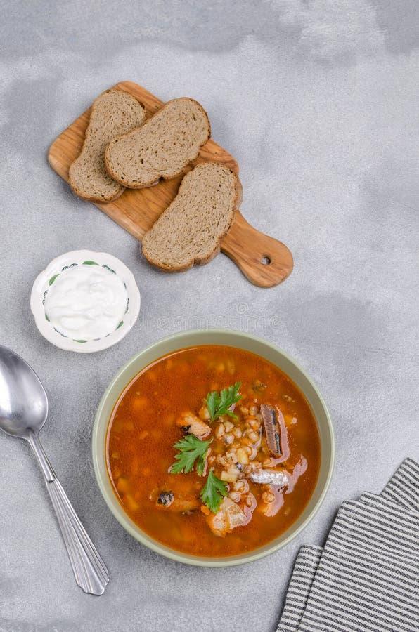 Sopa tradicional dos peixes do tomate imagens de stock
