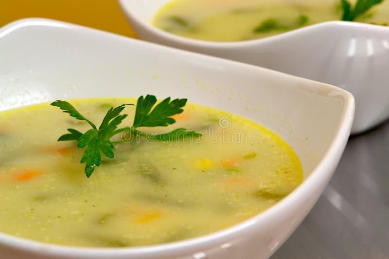 Sopa vegetal fotografia de stock royalty free