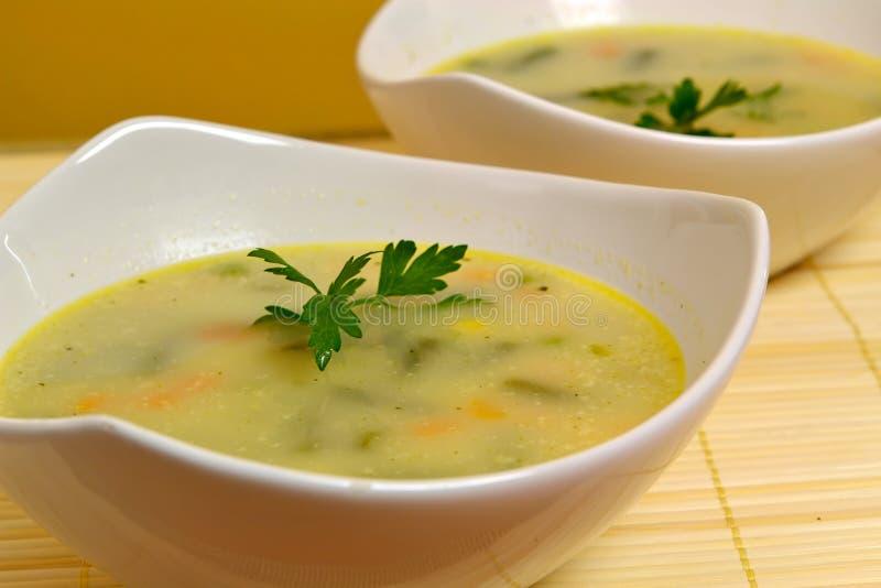 Sopa vegetal fotos de archivo