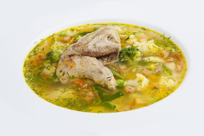 Sopa vegetal com galinha fotografia de stock