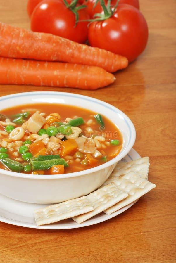 Sopa vegetal com o tomate fresco das cenouras dos biscoitos imagens de stock