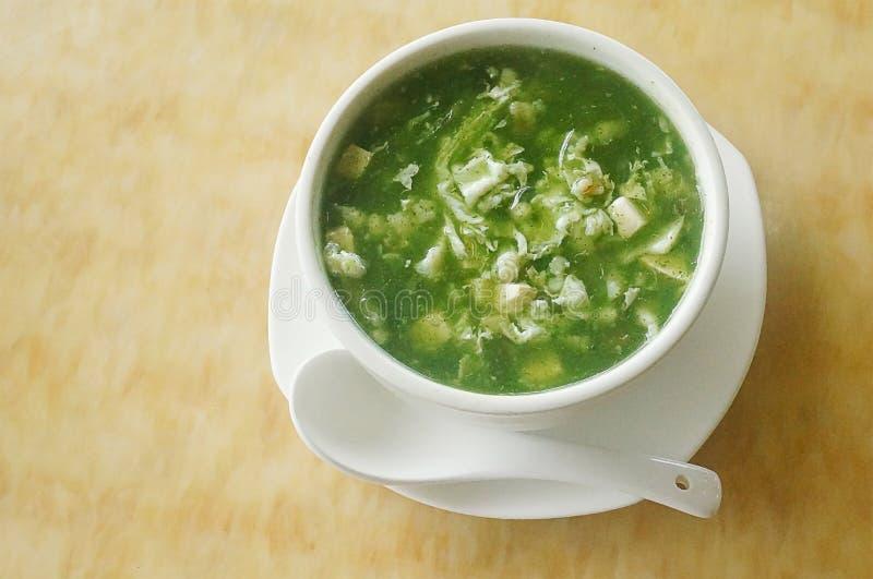 Sopa vegetal do marisco chinês foto de stock