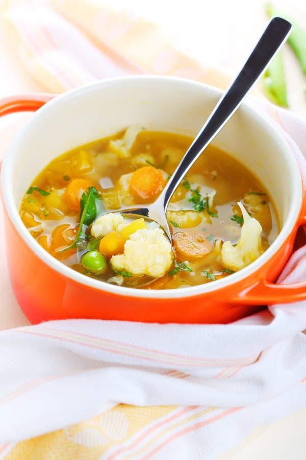 Sopa vegetal vegetariana foto de archivo libre de regalías