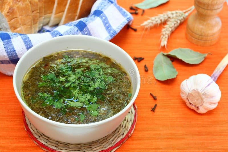 Sopa verde com salsa fotos de stock royalty free