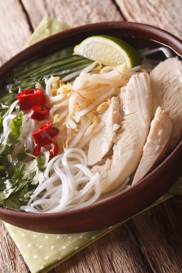 Sopa vietnamita Pho GA con los tallarines de pollo y de arroz, sprou de la haba imagen de archivo