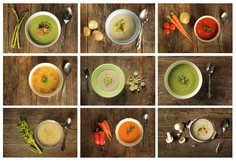 4 sopas verdes foto de archivo libre de regalías