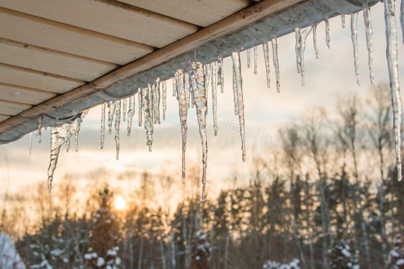 Sopel zimy słońca nieba dach fotografia royalty free