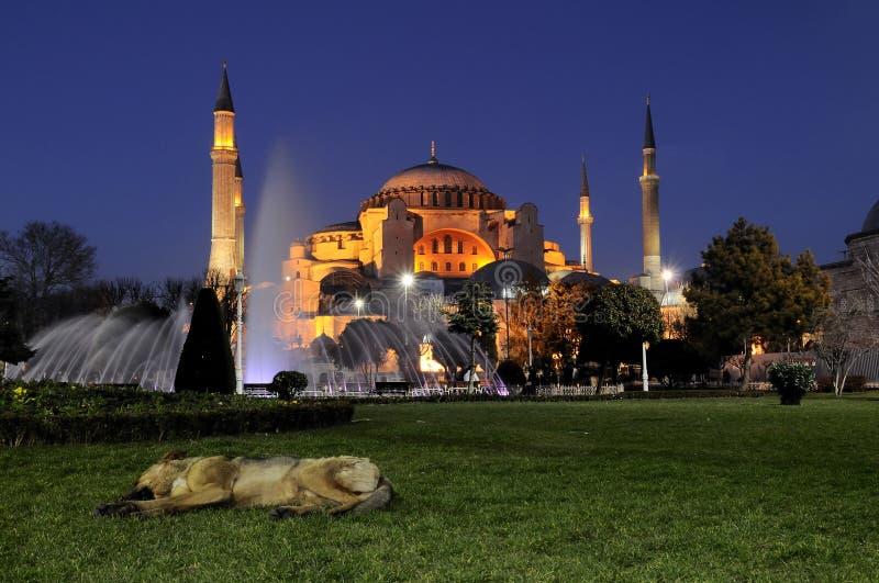 Sophia di hagia delle foto di notte. Costantinopoli-tacchino immagini stock